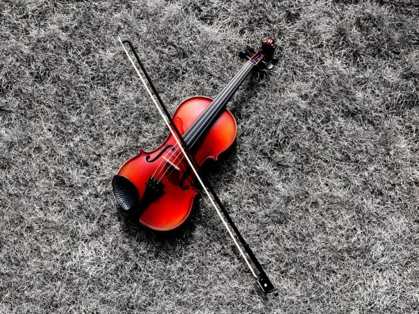 Violin Beautiful